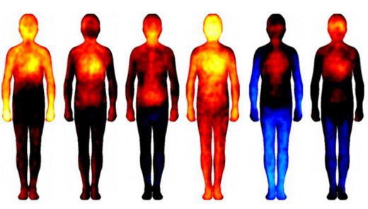 Presentan un mapa corporal de las emociones | COSMETOLOGAS.COM ...